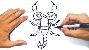 Cómo Dibuja Un Escorpión Fácil Paso a Paso