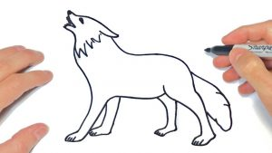 Cómo Dibujar Un Lobo Para Niños Fácil Paso a Paso