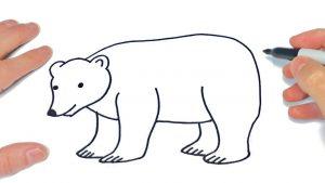 Dibuja Un Oso Polar Paso a Paso Fácil