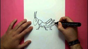 Cómo Dibuja Un Saltamontes Paso a Paso Fácil