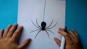Dibujar Una Araña Paso a Paso Fácil
