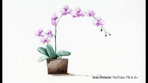 Dibuja Orquídeas Fácil Paso a Paso