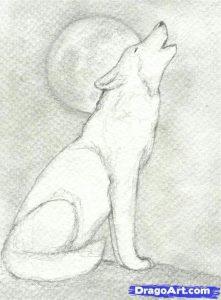Dibujar Un Lobo Aullando Paso a Paso Fácil