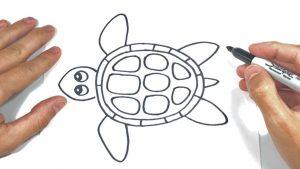 Dibujar Una Tortuga Marina Fácil Paso a Paso