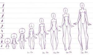 Cómo Dibujar Anatomía Paso a Paso Fácil