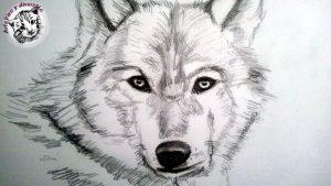 Cómo Dibuja Animales A Lápiz Fácil Paso a Paso