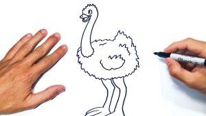 Cómo Dibujar Nandu Paso a Paso Fácil