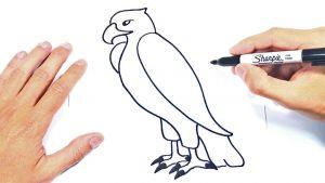 Cómo Dibuja Un Águila Fácil Paso a Paso