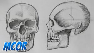 Cómo Dibuja Un Cráneo Paso a Paso Fácil