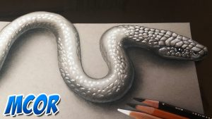 Cómo Dibujar Una Cobra En 3D Fácil Paso a Paso