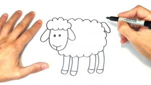 Cómo Dibuja Una Oveja Fácil Paso a Paso