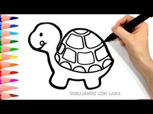 Cómo Dibujar Una Tortuga Paso a Paso Fácil