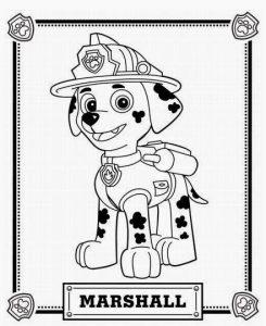 Cómo Dibuja A La Patrulla Canina Paso a Paso Fácil