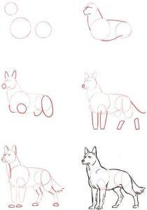 Dibuja Animales Domésticos Paso a Paso Fácil