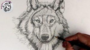 Cómo Dibuja Animales Realistas Paso a Paso Fácil