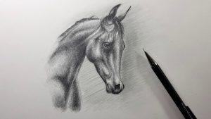 Cómo Dibujar Caballos A Lápiz Fácil Paso a Paso