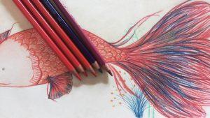 Dibuja Con Lápices De Colores Fácil Paso a Paso