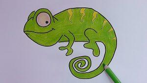 Dibuja Un Camaleón Paso a Paso Fácil
