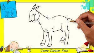 Cómo Dibujar Una Cabra Fácil Paso a Paso