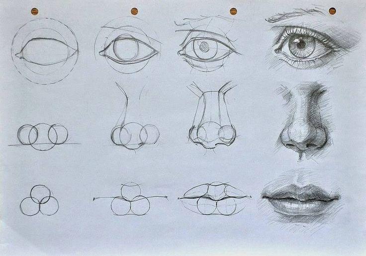 dibujar nariz - Buscar con Google  Dibujar narices  Dibujos  Bocetos, dibujos de Una Nariz, como dibujar Una Nariz paso a paso