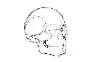 Dibujo de estructura metálica de un cráneo humano