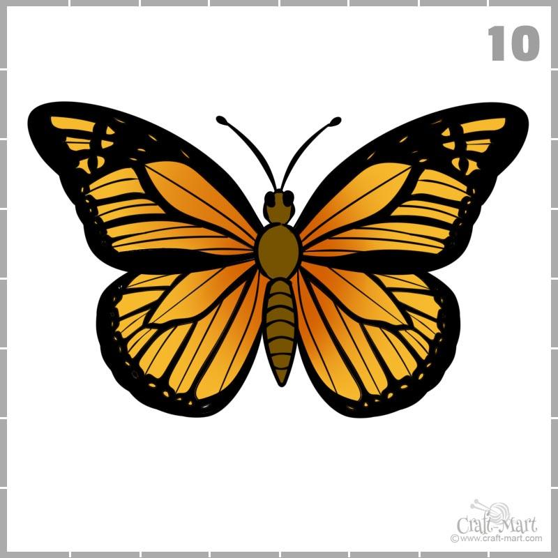 Dibujando alas de mariposa en color