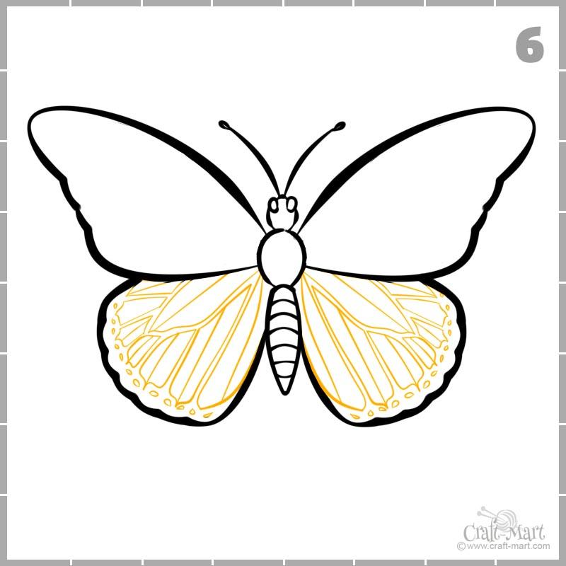 Dibujar patrón de alas de mariposa