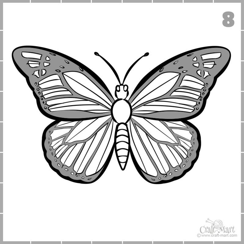 dibujar celdas de alas de mariposa