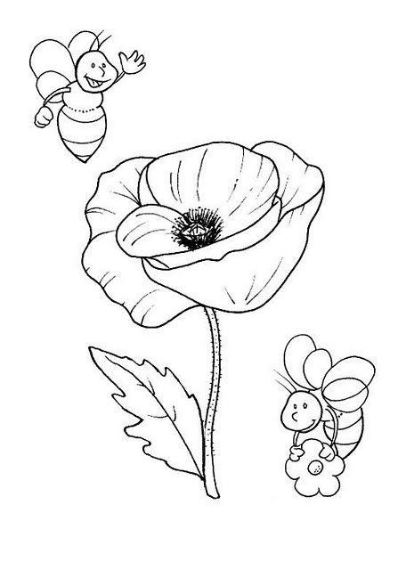 Resultado de imagen de como dibujar amapolas  Amapola dibujo  Dibujos   Amapolas, dibujos de Amapolas, como dibujar Amapolas paso a paso