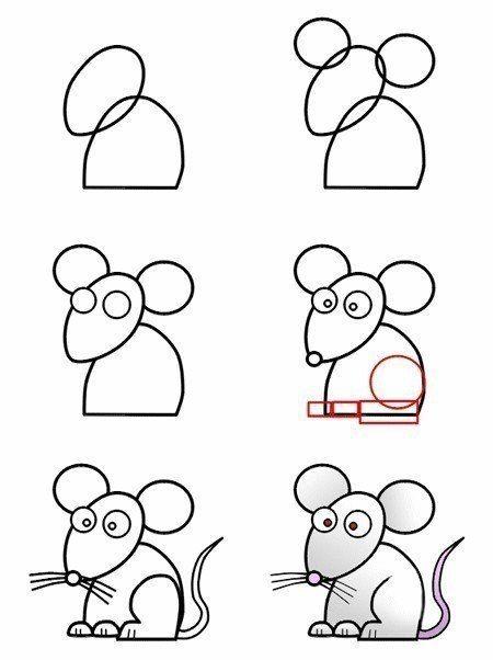 Como dibujar un raton para niños paso a paso  Animales faciles de dibujar  Como  dibujar animales  Dibujos de animales, dibujos de Una Rata, como dibujar Una Rata paso a paso