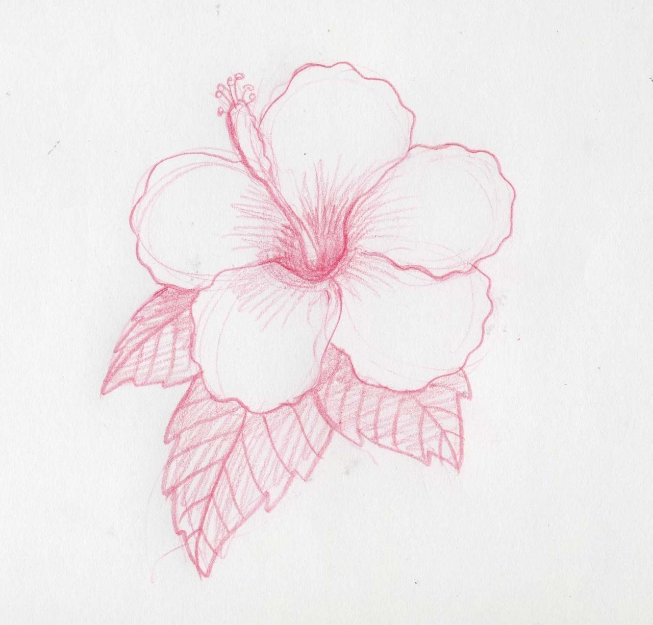Cómo dibujar flores hawaianas  Como dibujar flores  Flores dibujadas a  lapiz  Flores a lapiz, dibujos de Flores A Lápiz, como dibujar Flores A Lápiz paso a paso