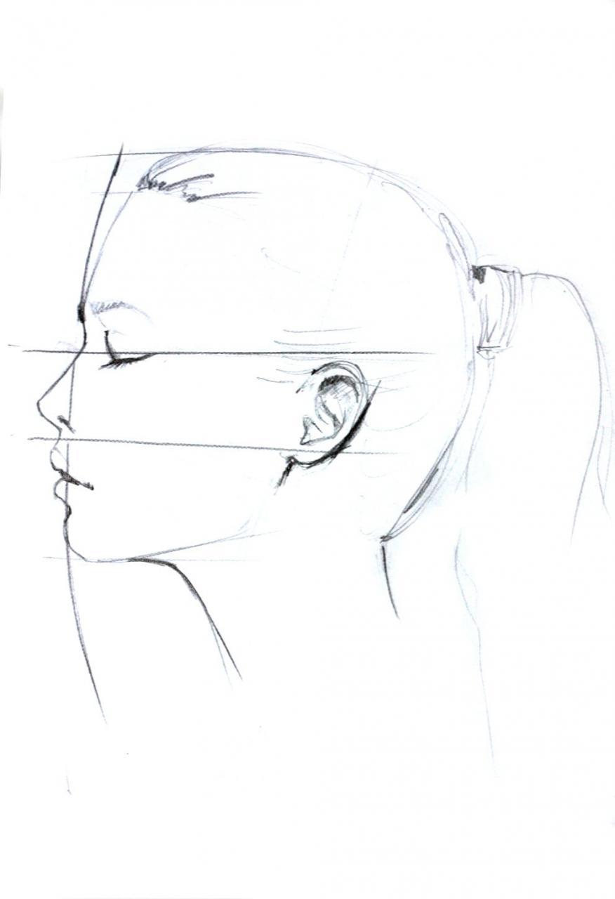 Dibujo de perfil  Perfiles dibujo  Dibujos  Dibujos a lapiz rostros, dibujos de Perfiles, como dibujar Perfiles paso a paso