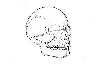 Dibujo detallado de estructura metálica de un cráneo humano