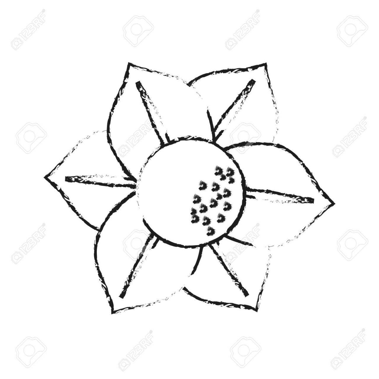Ilustración de vector de imagen de icono de delicada flores pequeñas dibujar, dibujos de Flores Pequeñas, como dibujar Flores Pequeñas paso a paso