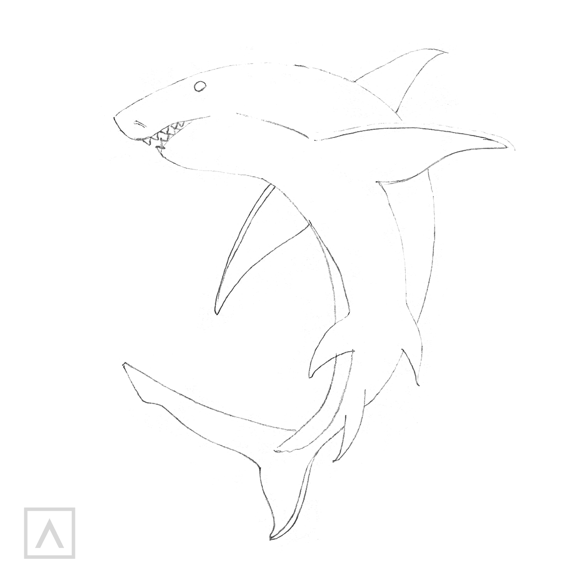 Cómo dibujar un tiburón - Paso 5