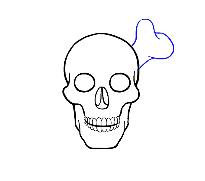 Cómo dibujar una calavera: paso 15