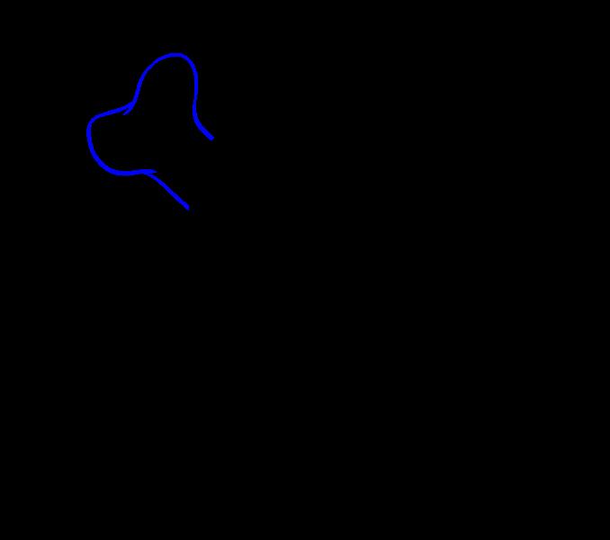 Cómo dibujar una calavera: paso 18