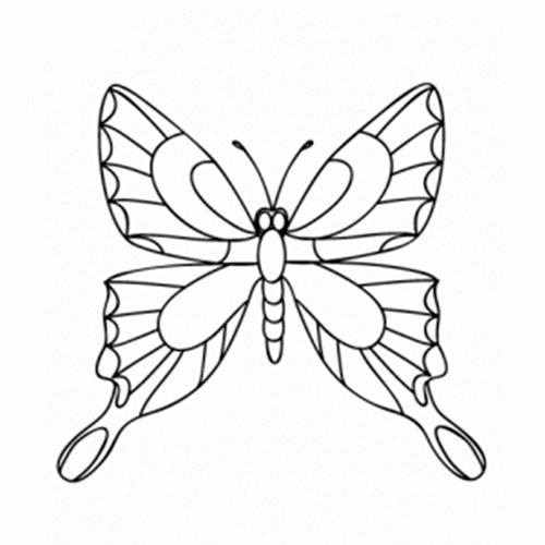 Cómo dibujar Mariposas ✍ COMODIBUJAR - CLUB, dibujos de Mariposas, como dibujar Mariposas paso a paso