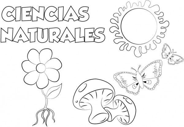 Dibujo ciencias naturales para imprimir y colorear en 2020  Dibujos de ciencias  naturales  Ciencias naturales  Caratulas de ciencias naturales, dibujos de La Portada De Ciencias Naturales, como dibujar La Portada De Ciencias Naturales paso a paso