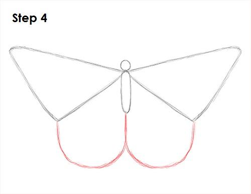 Dibujar Mariposa 4