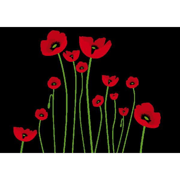 Dibujo amapolas  Dipinti floreali  Disegno fiori  Fiori con colori pastello, dibujos de Amapolas, como dibujar Amapolas paso a paso