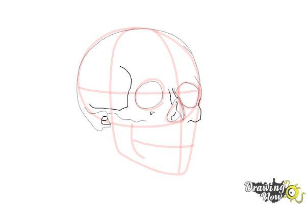 Cómo dibujar una calavera paso a paso - Paso 6