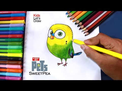 Cómo dibujar a ALITAS (SweetPea) La Vida Secreta de tus Mascotas, dibujos de Mascotas, como dibujar Mascotas paso a paso