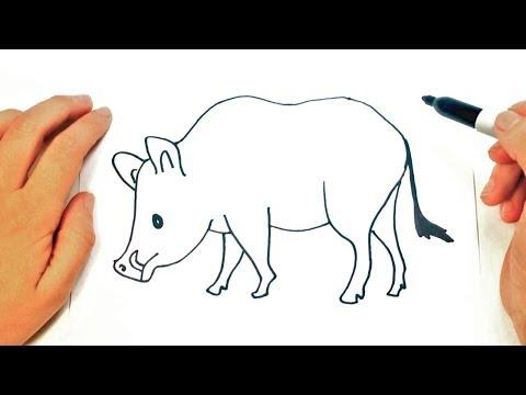 Cómo Dibujar Jabali Paso A Paso Muy Fácil 2021 Dibuja Fácil