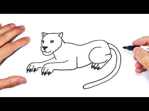 Cómo dibujar una Pantera Paso a Paso  Dibujo de Pantera - YouTube, dibujos de Una Pantera, como dibujar Una Pantera paso a paso