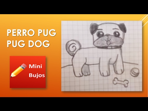DIBUJAR UN PERRITO PUG DRAW A PUG DOG (SPEED DRAW) - YouTube, dibujos de Un Perrito Pug, como dibujar Un Perrito Pug paso a paso