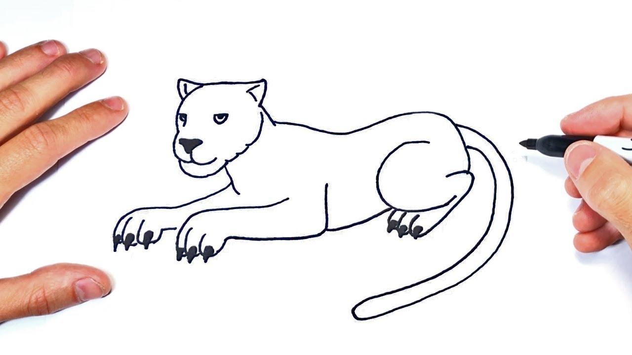 Cómo dibujar una Pantera Paso a Paso  Dibujo de Pantera, dibujos de Una Pantera, como dibujar Una Pantera paso a paso