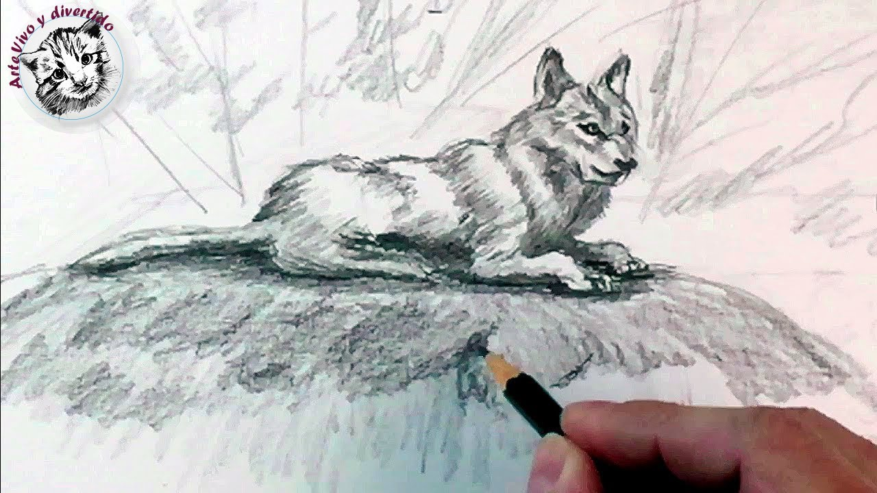 How to draw a wolf with pencil step by step: How to draw animals, dibujos de Animales A Lápiz, como dibujar Animales A Lápiz paso a paso