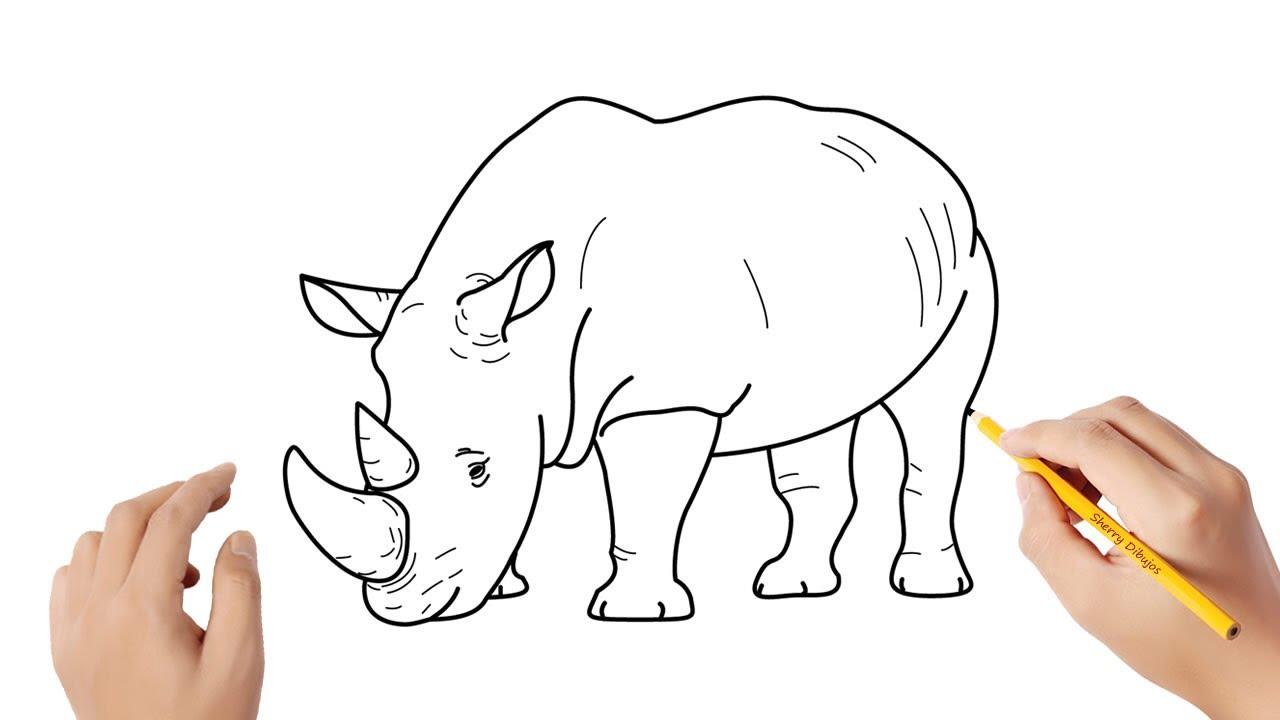 Cómo dibujar un rinoceronte  Dibujos sencillos, dibujos de Un Rinoceronte, como dibujar Un Rinoceronte paso a paso