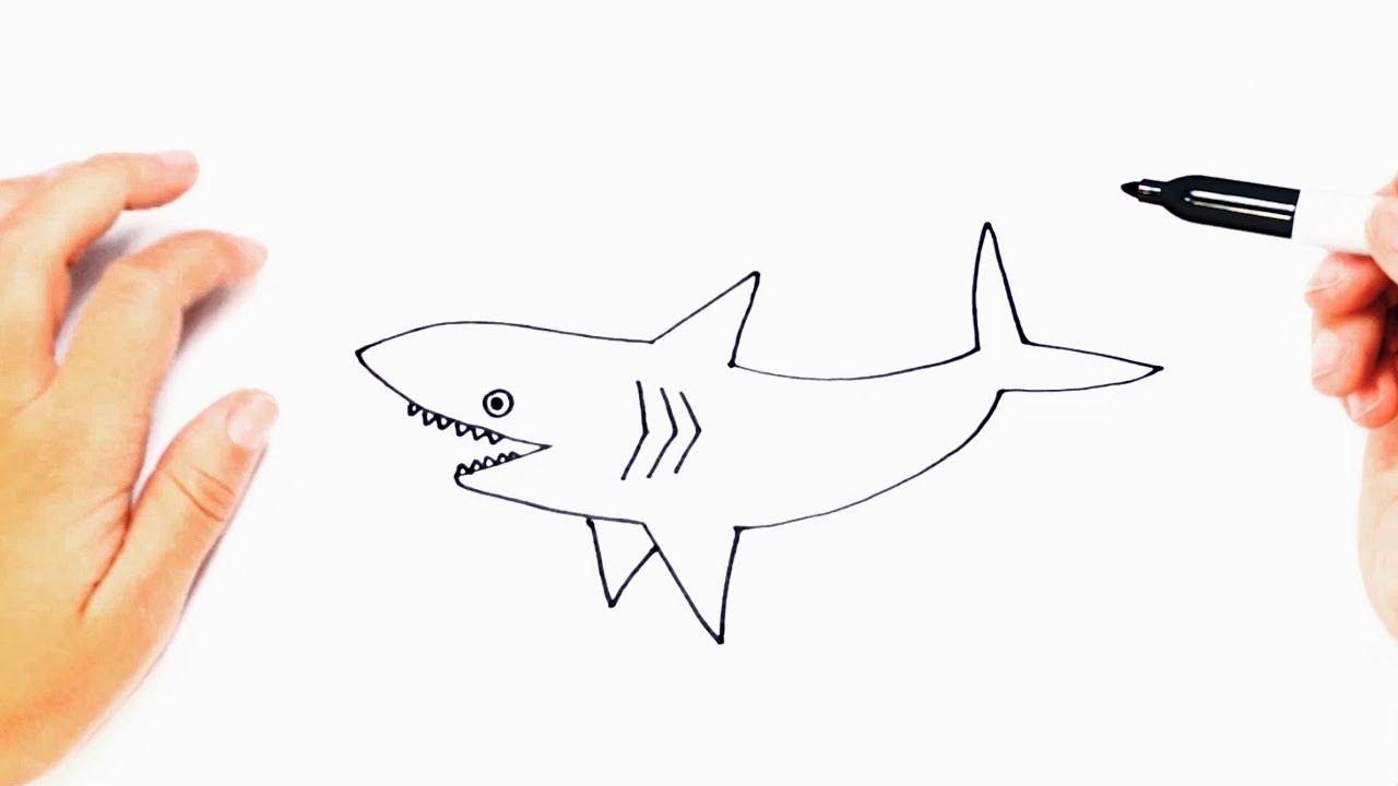 Cómo dibujar un Tiburón paso a paso Dibujo fácil de Tiburón, dibujos de Un Tiburón, como dibujar Un Tiburón paso a paso